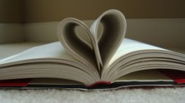 romance novel, romantic novel, page-turner, books