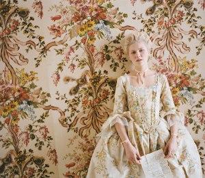 silk, weaving, lyon, romance, marie antoinette