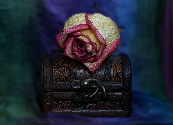 love poem, helena fairfax