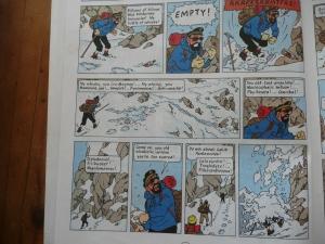 tintin, captain haddock, tibet, snowy, wintry, books, reading
