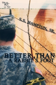 stan hampton, author interview, iraq