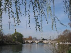 the antique love, helena fairfax, richmond park