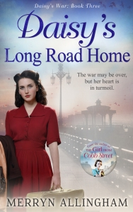 merryn allingham, helena fairfax, long road home